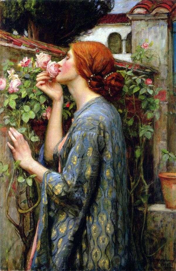 我最喜欢的玫瑰是John Waterhouse