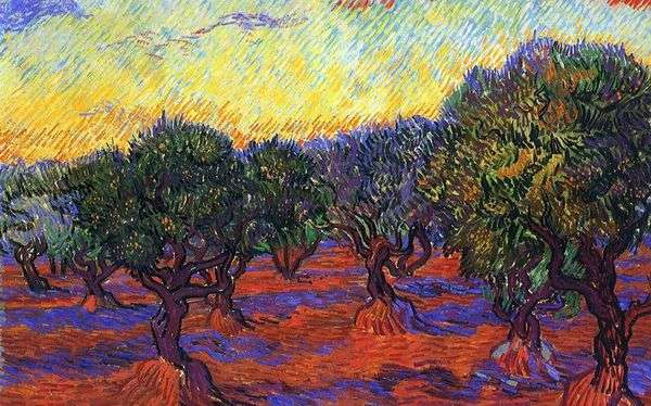 橄榄树林:橙色天空   文森特梵高