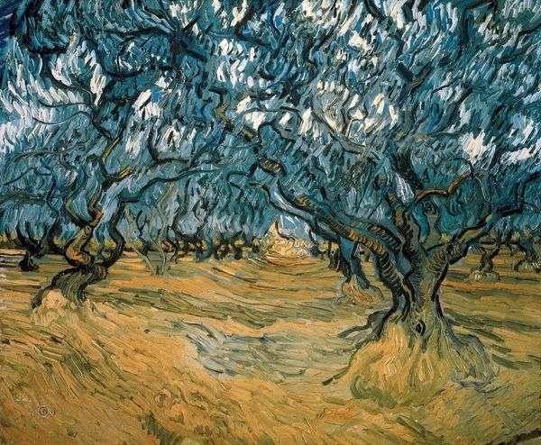 橄榄树   文森特梵高