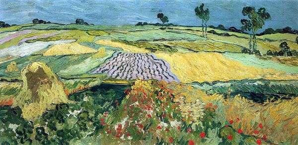 麦田,平原Over   Vincent Van Gogh