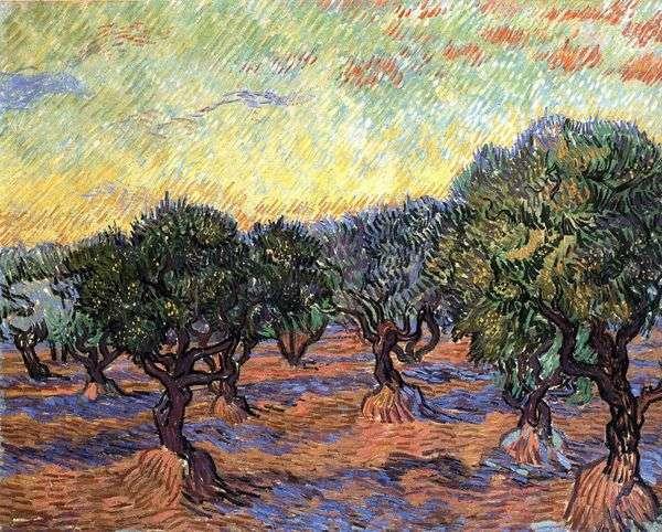 Grove Olive   Vincent Van Gogh