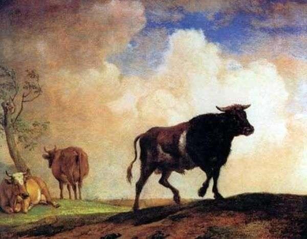 公牛   保罗斯波特