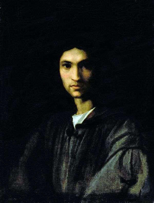 一个年轻人的画象   安德里亚del Sarto