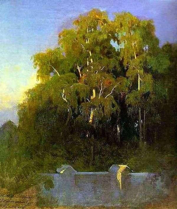 桦树林在晚上   费多尔瓦西里耶夫