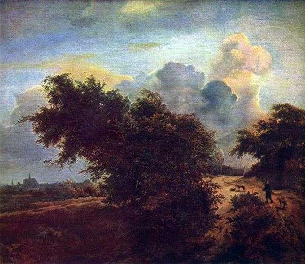 在灌木丛中的沙丘景观   Jacob van Reisdal