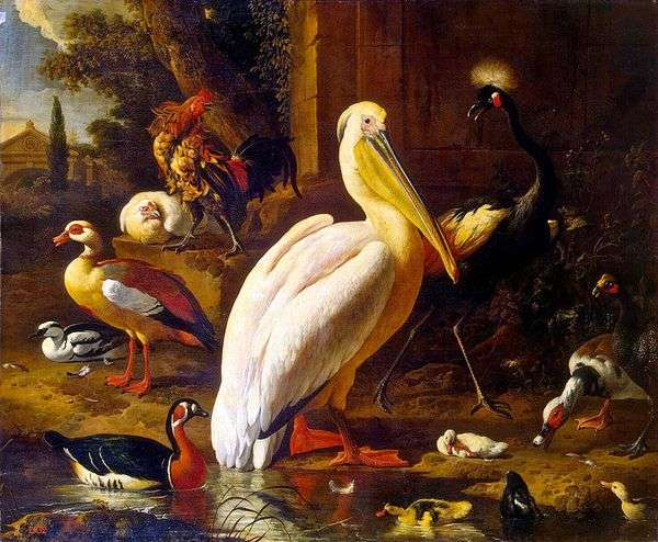 公园里的鸟类   Melchior de Hondekuter