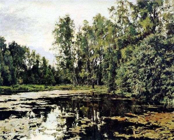 Serov V. A.   Domotkanovo的一个废弃的池塘