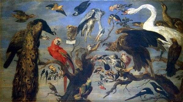 鸟类音乐会   弗兰斯斯奈德斯