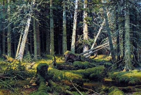 Burelom(沃洛格达森林)。被风吹倒的树木   伊万 希什金