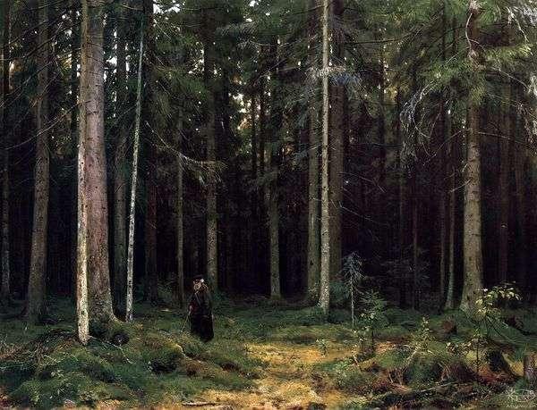 在伯爵夫人Mordvinova的森林里。彼得霍夫   伊万希什金