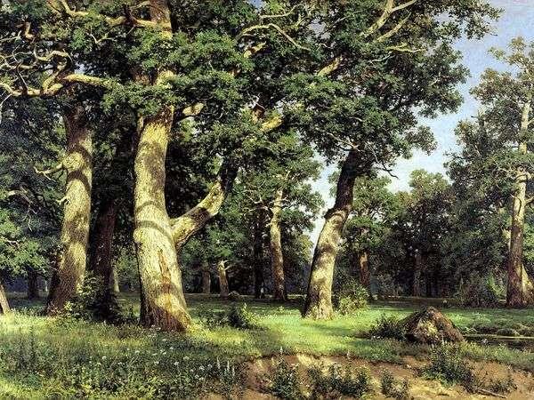 橡树林   伊万希什金