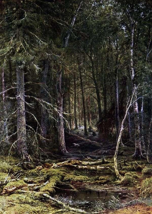 森林荒野   伊万希什金