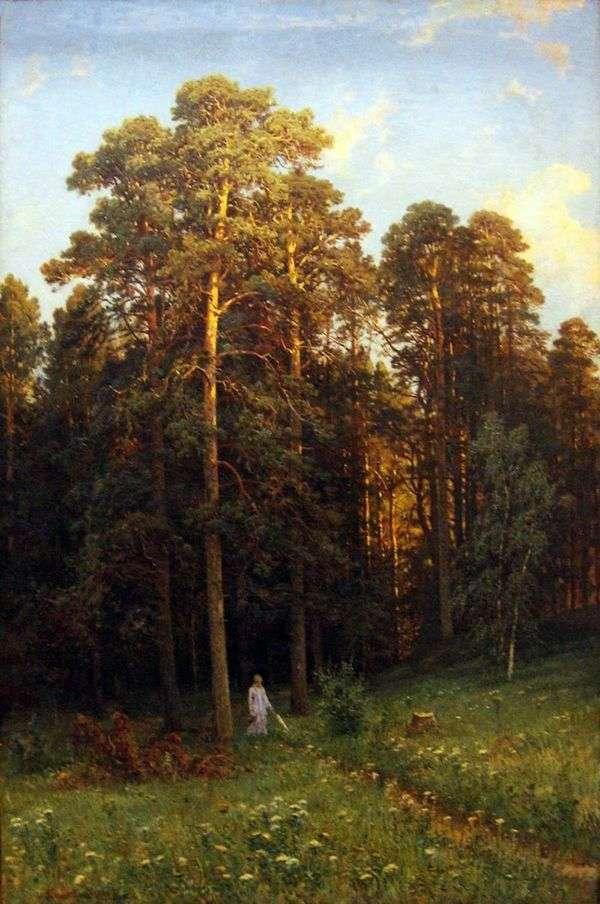 在松树林的边缘   希什金