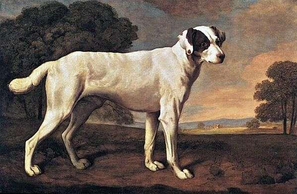 一条狗的画象在Gatton公园   乔治Stubbs