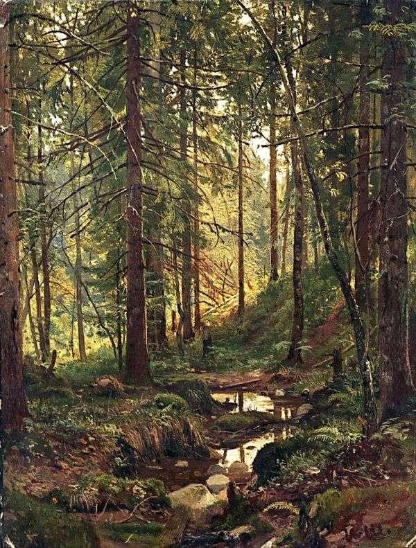 在森林里流。Siverskaya   Ivan Shishkin
