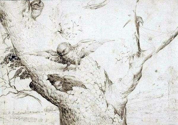 猫头鹰巢   Hieronymus Bosch