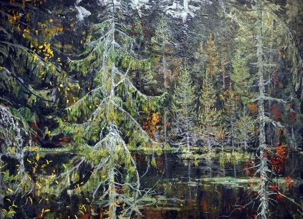 森林湖   尼古拉罗马丁