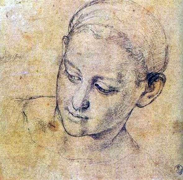 研究一个虔诚的女人的脸   Agnolo Bronzino