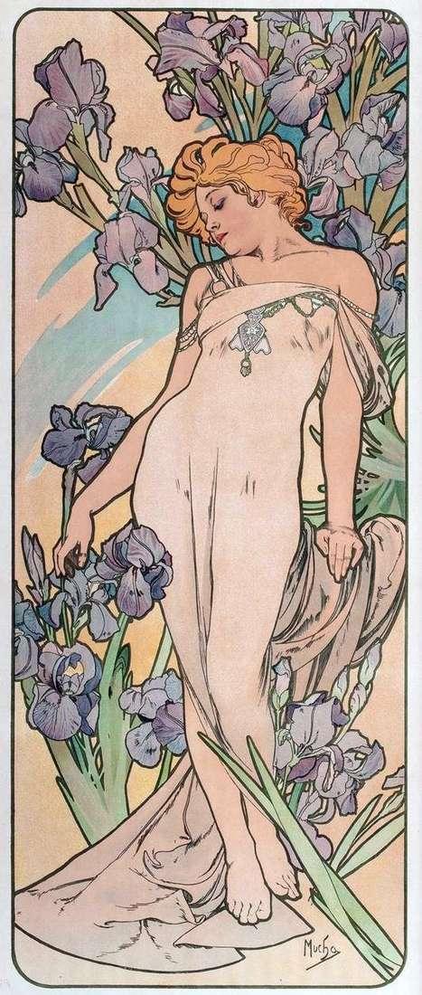 Iris   Alphonse Mucha